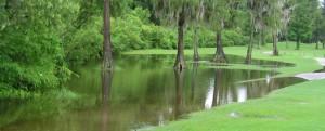Water Resources | WRA, Inc. | Tampa FL