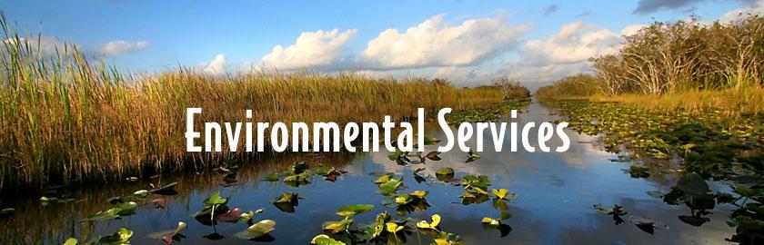 Environmental1a